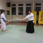Aiki Ken – Techniken mit dem japanischen Übungsschwert (Bokken)