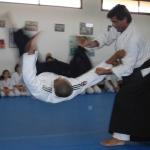 Tai Jutsu – waffenlose Techniken (Hebel und Würfe)